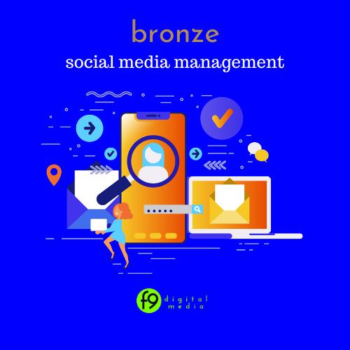 Bronze Social Media Management